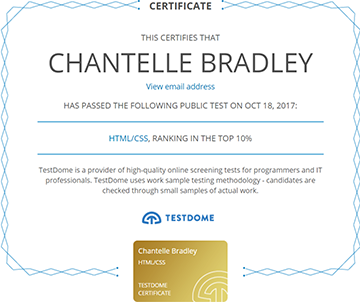 Testdome Certification - HTML and CSS - top 10%